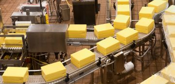 Boxes of yellow boxed cheese processing through dairy products manufacturing and packaging facility