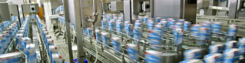 Dairy product production manufacturing facility
